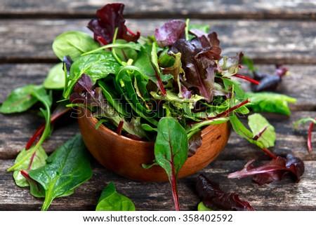 Fresh green salad mix - stock photo