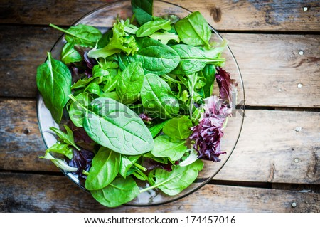 Fresh green salad with spinach,arugula,romaine and lettuce - stock photo
