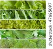 fresh green salads - stock photo