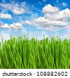 fresh green spring grass with water drops over beautiful blue sky with air bubbles. environment concept - stock photo