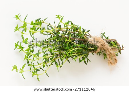 Fresh green thyme branch isolated - stock photo