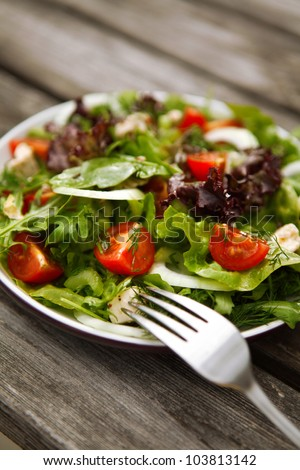 fresh green tomato and cucumber salad on a plate - stock photo