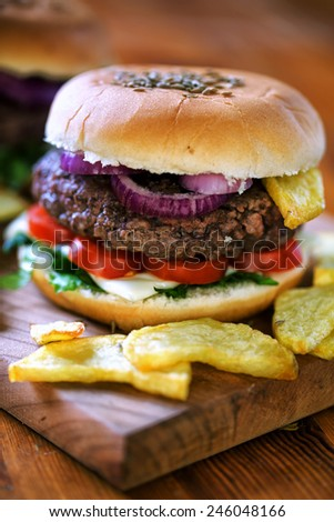 Fresh hamburger with fried potatoes - stock photo
