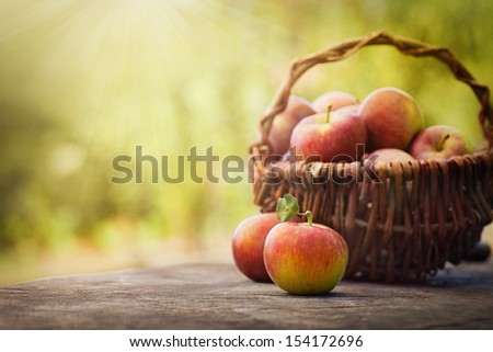 Fresh harvest of apples. Nature theme with red grapes and basket on wooden background. Nature fruit concept. - stock photo