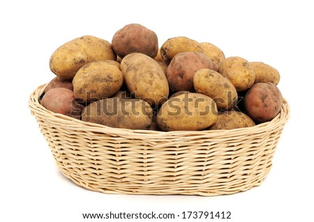 Fresh harvested potatoes in a basket