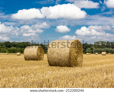 Fresh hay bales on an English field during summertime