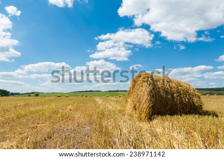 Fresh hay rolls lying in a field under a cloudy blue sky  - stock photo