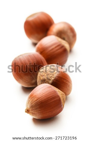 Fresh hazelnuts on white background in closeup