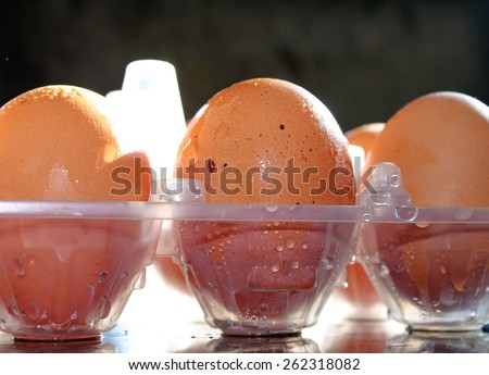 Fresh hens eggs in clear plastic packaging - stock photo