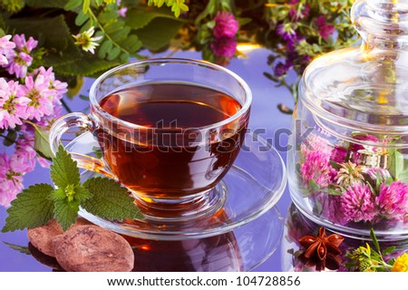 Fresh herbal tea with natural cocoa - stock photo