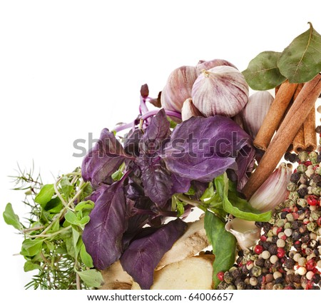 Fresh herbs and spices isolated on white - stock photo
