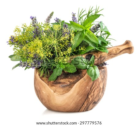 Fresh herbs and spices mint, basil, dill, rosemary, sage, lavender. Healthy food ingredients in mortar over white background - stock photo
