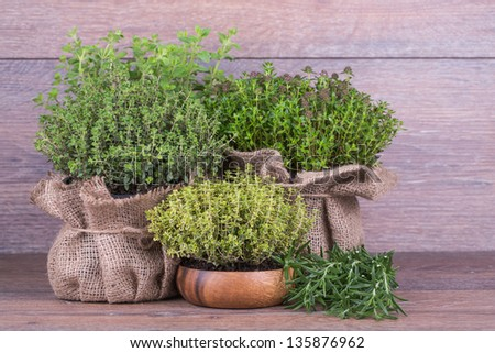 Fresh herbs in bag  on wooden background - stock photo