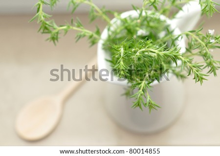 Fresh herbs in the kitchen - stock photo