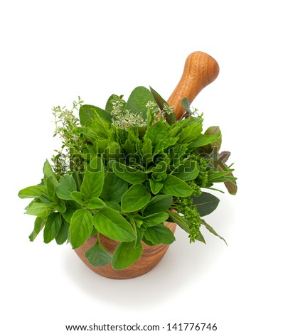 fresh herbs in wooden mortar - stock photo