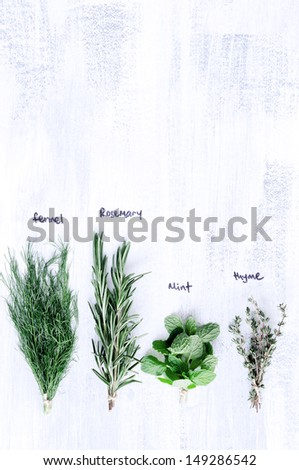 Fresh herbs on white rustic background with names, overhead - stock photo