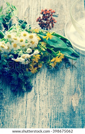 Fresh herbs on wooden surface/toned photo - stock photo