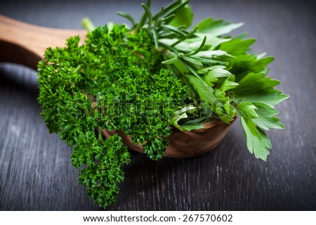 Fresh herbs on wooden table - stock photo