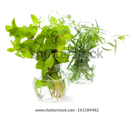 Fresh herbs over the white background  - stock photo