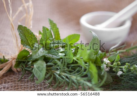 Fresh herbs tied to a bundle on burlap with a mortar & pestle in the background. Very shallow DOF, spearmint leaves are the focus point. - stock photo