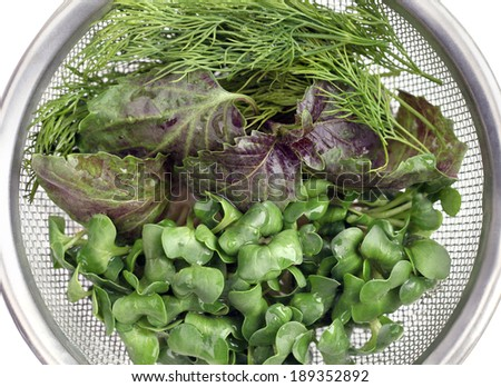 Fresh herbs with water drops in a metal colander. Healthy Eating. Overhead view.  - stock photo