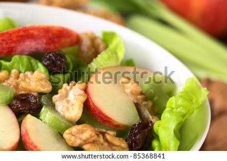 Fresh home-made delicious Waldorf Salad consisting of lettuce, apple, celery, walnuts, raisins and mayonnaise (Selective Focus, Focus one third into the salad) - stock photo