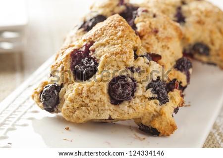 Fresh Homemade Blueberry Breakfast Scones ready to eat - stock photo