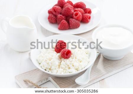fresh homemade cottage cheese with raspberry, milk and yogurt, horizontal - stock photo