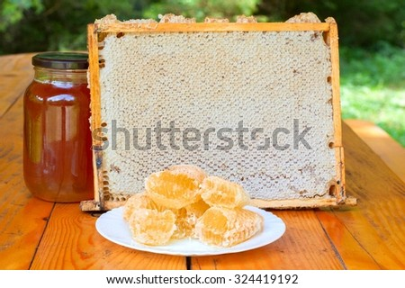 Fresh honey with honeycomb on a white plate - stock photo
