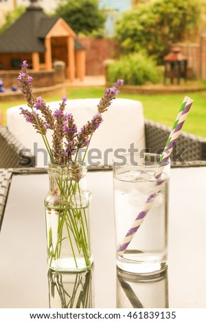 Fresh Iced Drinking Water Vase Lavender Stock Photo Royalty Free