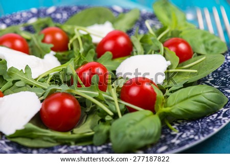 Fresh italian salad with tomatoes and mozzarella served on plate - stock photo