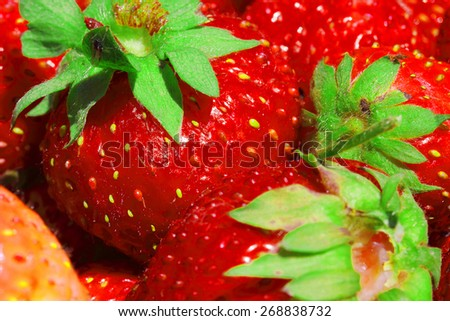 fresh, juicy and healthy strawberries close up - stock photo