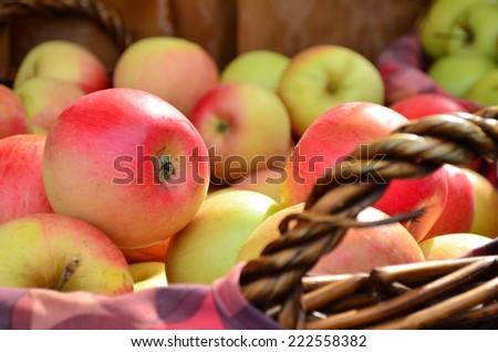 Fresh juicy apples in basket,  - stock photo