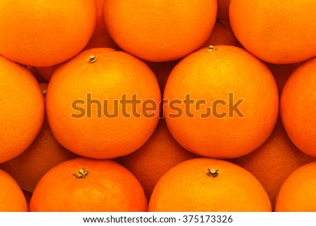 Fresh, juicy, bright tangerines with embossed skin, photographed close-up - stock photo