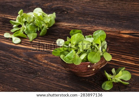 Fresh lamb's lettuce salad in wooden bowl on old wooden vintage background. Fresh salad, rustic vintage country style image. - stock photo