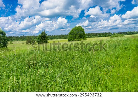Fresh Landscape Field Freedom  - stock photo