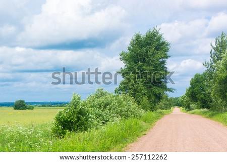 Fresh Landscape Growth Season  - stock photo