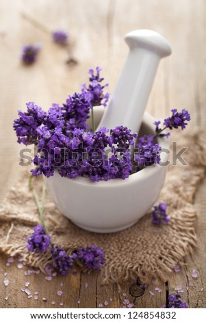 fresh lavender in mortar - stock photo