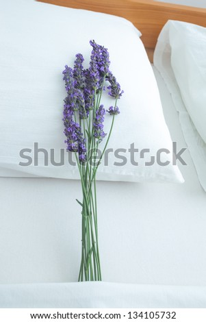 Fresh lavender on bed pillow in bedroom interior - stock photo