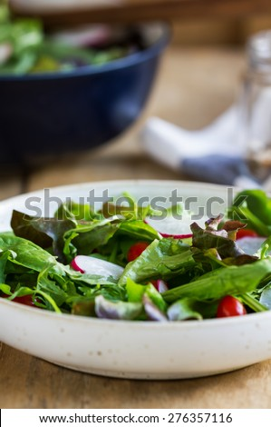 Fresh leafy salad by big bowl of salad and sea salt