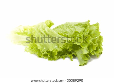 Fresh leaves of green salad isolated - stock photo