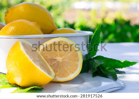 fresh lemon and a sprig of mint on natural beckground - stock photo