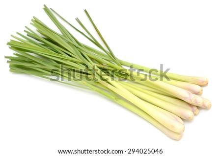 Fresh Lemongrass - stock photo