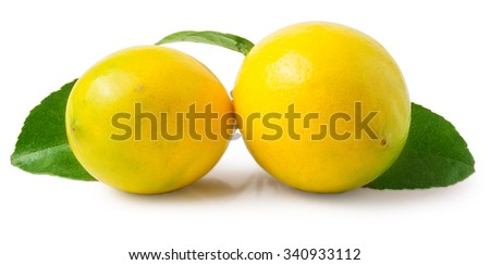 fresh lemons with green leaves isolated on white background.