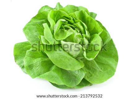 Fresh lettuce isolated on white - stock photo