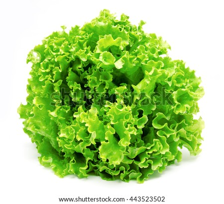 Fresh lettuce leaves isolated on a white background - stock photo