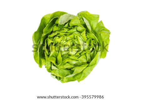 fresh lettuce salad - isolated on white - stock photo