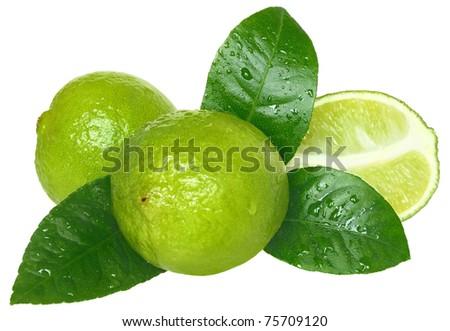 Fresh lime on a white background. - stock photo