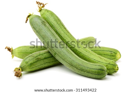 fresh loofah on the white background  - stock photo