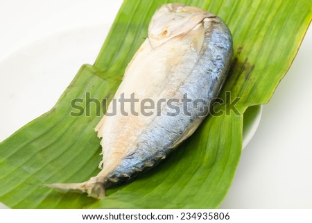 Fresh mackerel or tuna steamed fish on banana green leaf from sea on white background